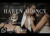 Haren agency ( agencia de escorts )