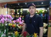 Flores preservadas de florlicol® mayor duraciÓn