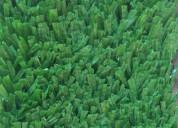 Tapetes desinfectantes area grama sintetica  – caj
