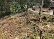 Lote en venta en bosques pinasaco pasto narino 518 m2