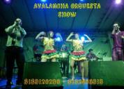 Orquestas tropicales en santader 3138120280