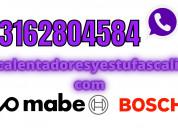 Reparacion de calentadores bosch 3162804584