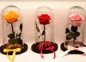 CÚpulas de cristal con florl natural preservada