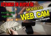 Modelo para web